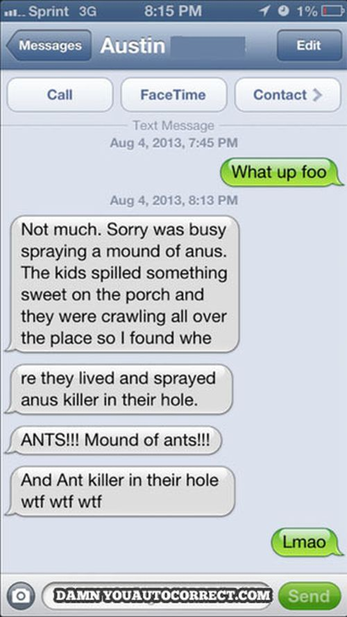 25 funniest autocorrect fails of the year 015