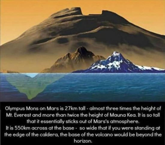 30 Awesome Scientific Facts 016