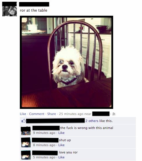 15 Facebook Updates That Are Actually Worth Reading 011