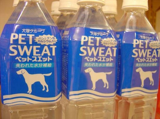 19 Companies that Failed at Naming Their Products 019