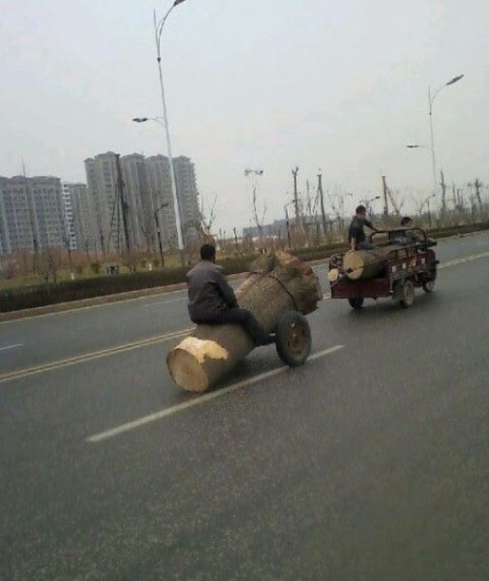 Things that you will see Only In Asia 039