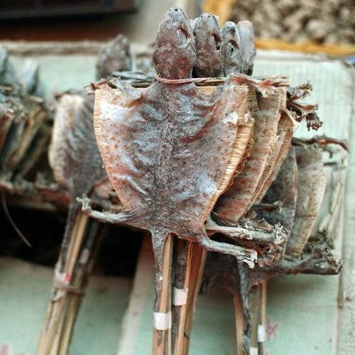 Dried Lizards (China)