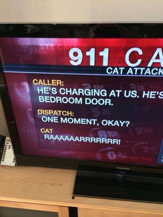 Weird Local News Captions 007