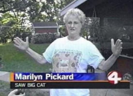 Weird Local News Captions 017