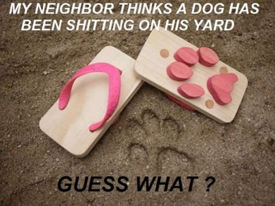 Worst Neighbors Ever 003