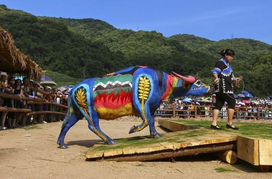 Buffalo Bodypainting Competition in China 002