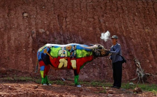 Buffalo Bodypainting Competition in China 006