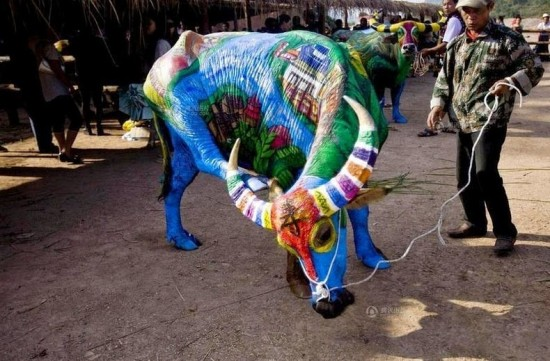 Buffalo Bodypainting Competition in China 007
