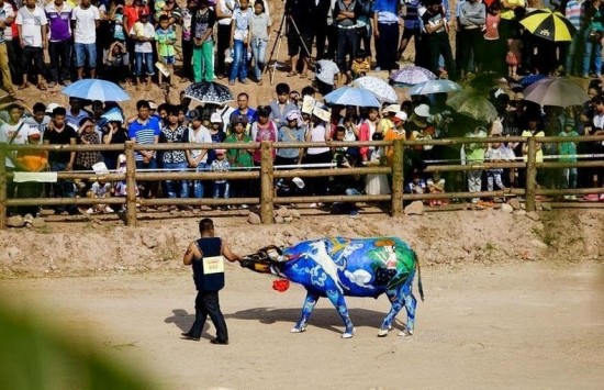 Buffalo Bodypainting Competition in China 008