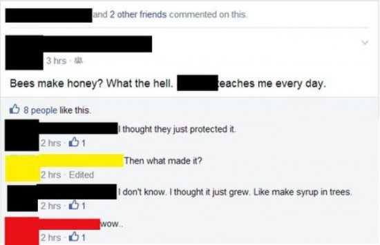 The Dumbest People Comment On Facebook 005