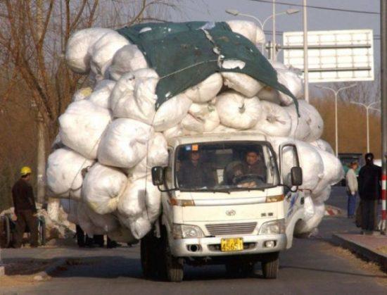 Hilarious transportation 12