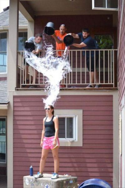 perfectly timed pics 19